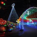 東京ドイツ村イルミネーション2014冬!開催日程や利用料金、駐車場情報まとめ