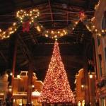ディズニークリスマス2014はいつから?混雑状況とチケット入手法