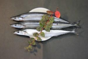f14860cd1f2d09b2dee8b5643e90bf69 s 300x200 魚を冷凍保存する方法! 賞味期限はいつまで?美味しく解凍するコツ