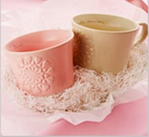 img goods02 【バレンタイン2015】スタバとタリーズを比較!かわいい人気アイテムは?