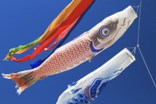 b91a0a6348d22676cd39c8383640bda6 s 500x333 こどもの日とは?鯉のぼりを飾る意味と由来|いつからいつまで飾るのか?