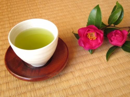 image003 500x375 【花粉症対策】食べ物はヨーグルトとお茶がおすすめ!摂取量は?