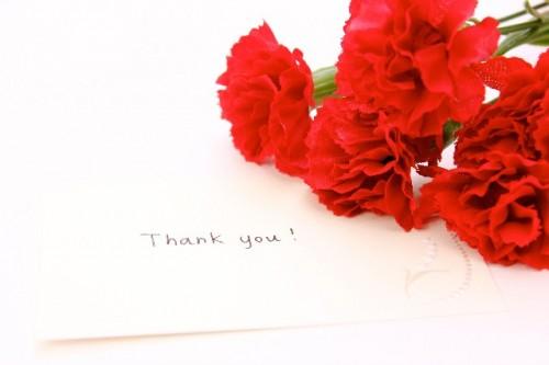 f44e9f8b3548dff5eae56f32ca061b22 s 500x333 母の日にカーネーションを贈る意味と由来|花言葉を色別でわかりやすく