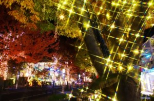 23393 1 300x198 名古屋でイルミネーションとディナーが楽しめるクリスマスデート3選