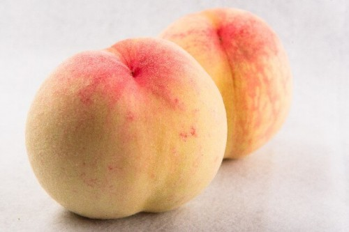 110 500x333 【東北・秋の味覚】おすすめの観光農園3選、人気のフルーツは?