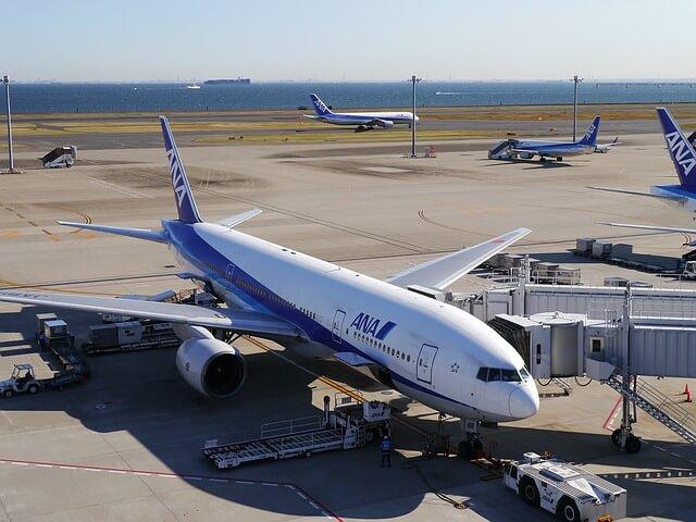 42 お盆帰省の手土産予算相場は?羽田空港で買える東京土産ランキング♪