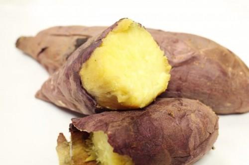 113 500x333 サツマイモの賞味期限と冷凍保存方法 芽が出ても食べれる?