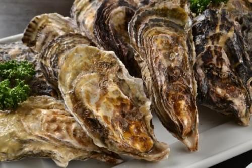 14 500x333 牡蠣小屋の魅力に迫る!関東で旬の絶品カキが食べ放題のお勧めの店をチョイス