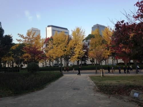 17 500x375 【大阪城公園の紅葉】見ごろとライトアップの時間は?ベストスポット3選