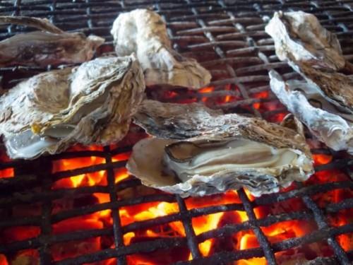 23 500x375 牡蠣小屋の魅力に迫る!関東で旬の絶品カキが食べ放題のお勧めの店をチョイス