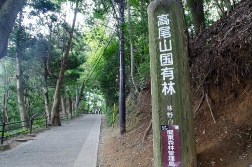 313 500x331 初めての高尾山登山はツアーがお勧め!コースの所要時間と人気の宿泊先をチェック
