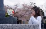 18 150x96 【桜の開花宣言】基準は何?誰が決めるの?各地の測定場所は?