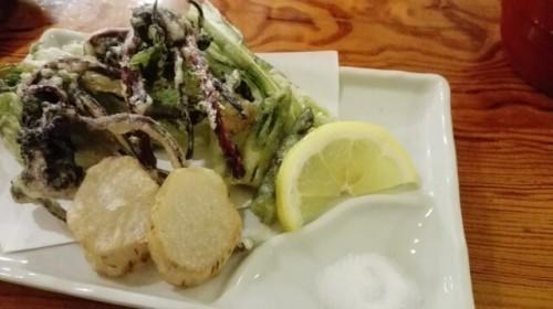 3a 500x280 【春の山菜】種類と特徴まとめ|美味しい食べ方もご紹介♪