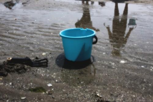 3 11 500x333 潮干狩りで採れる貝の見分け方!正しい持ち帰り方と保存方法